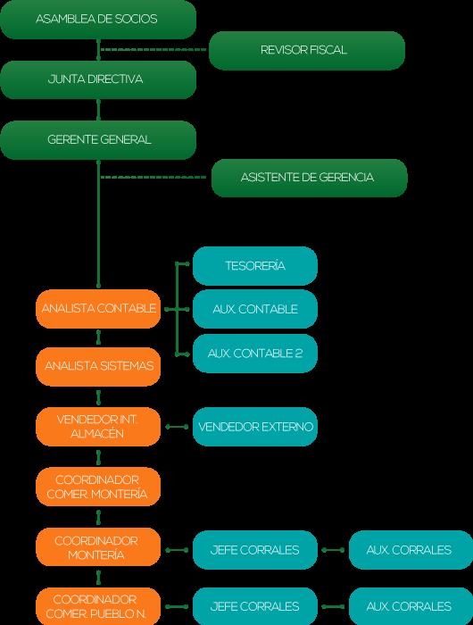 Organigrama-responsive